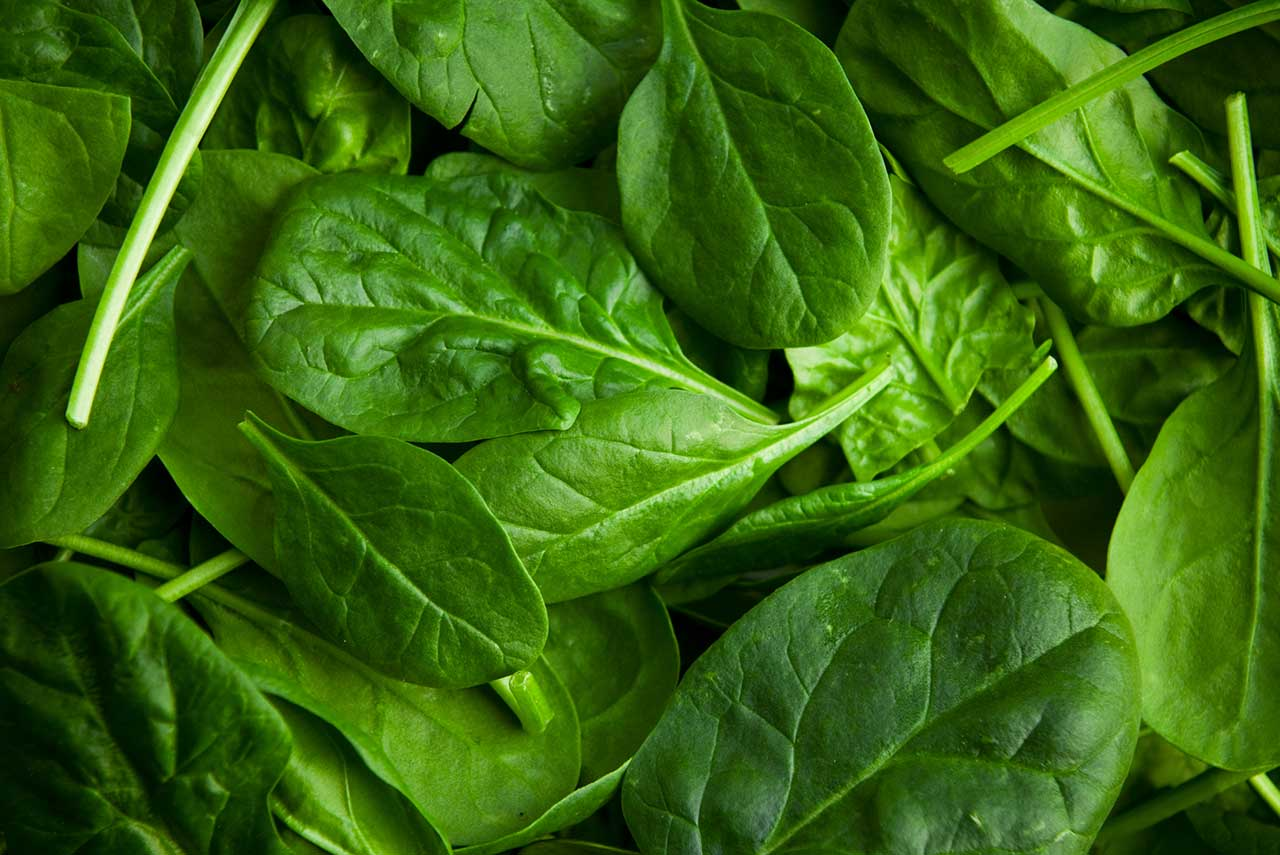 close-up photo of spinach, a glutathione food