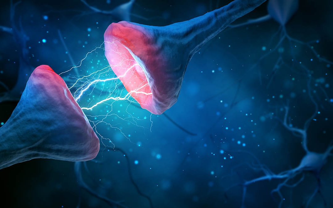 Magnesium for the Brain